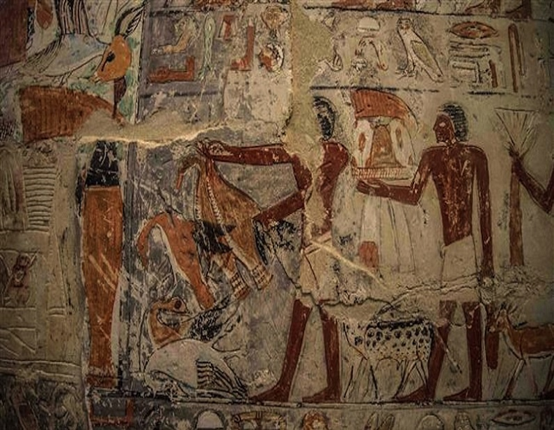 """The tomb is one of the most beautiful in Saqqara Necropolis because it still keeps its vivid colours and distinguished scenes,"" Minister of Antiquities Khaled El-Enany said. ""Among the [strangest] scenes is the one depicting the marriage of crocodiles, [in the presence of] a turtle."""